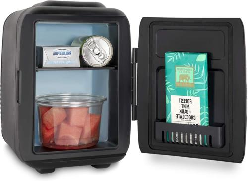 Mini Fridge Compact Cooler Warmer 4 Liter Portable With AC/D