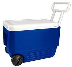Wheelie 38QT Cooler